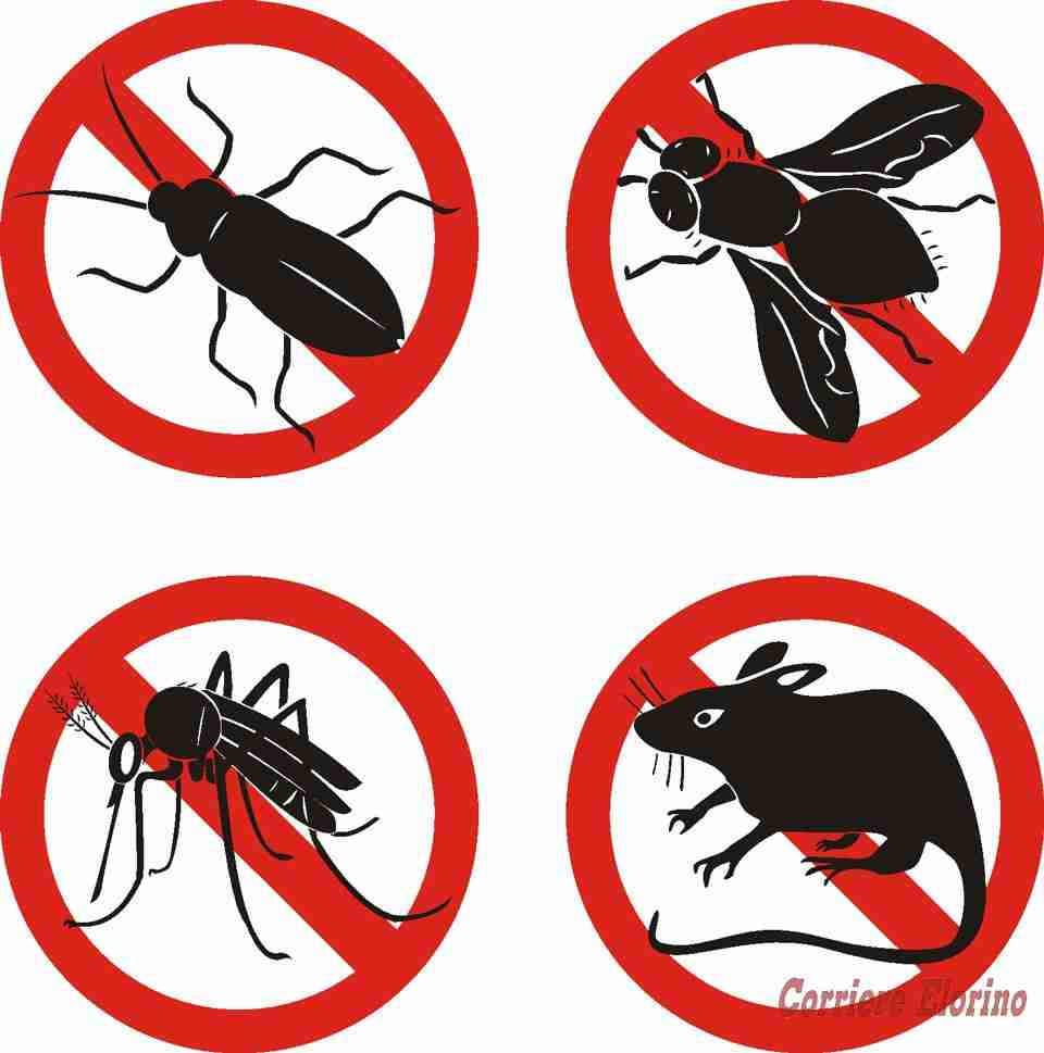 Dal 4 al 7 luglio disinfezione, disinfestazione e derattizzazione del centro abitato
