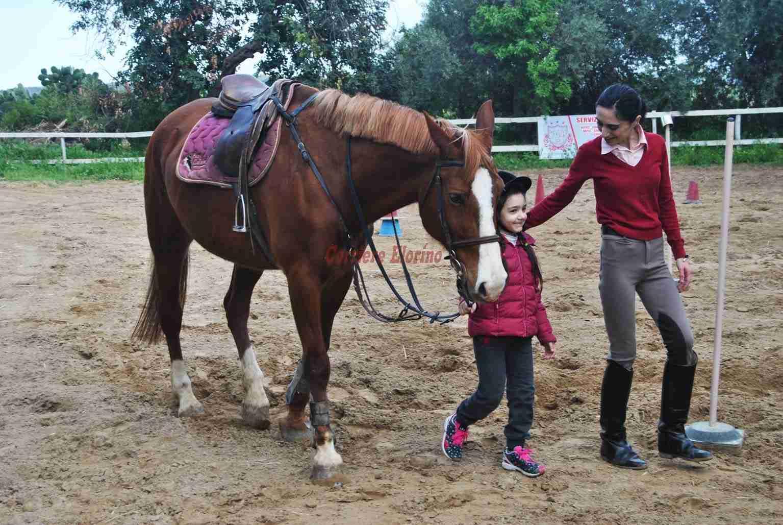 """Equitazione integrata a """"Il parco dei cavalieri"""", un nuovo modo di vivere il cavallo"""