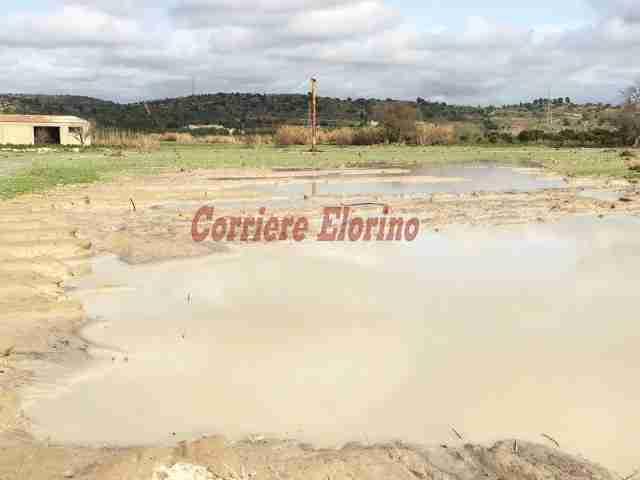 """Il deputato regionale Enzo Vinciullo: """"Gli agricoltori colpiti preparino una documentazione fotografica dei danni subiti"""""""
