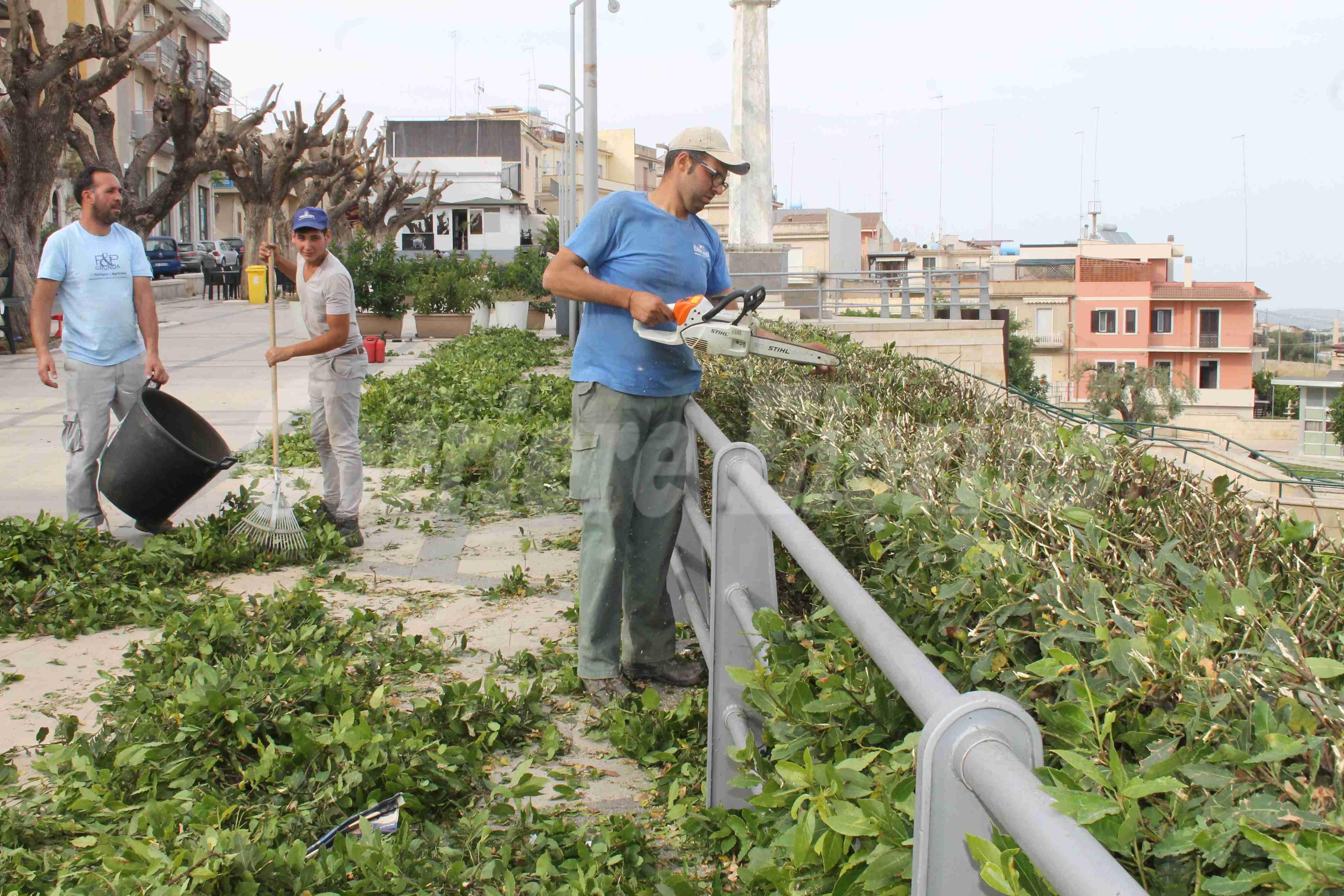 """""""Città Verde"""" senza sosta,ripulite le aiuole della passeggiata comunale"""
