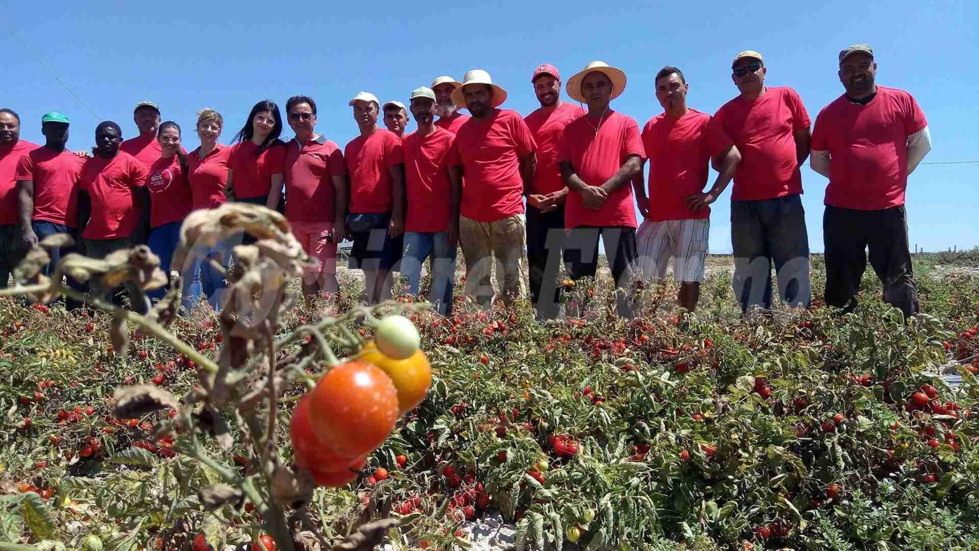 """All'Agriblea si lavora con la maglietta rossa: """"favorire l'integrazione"""""""