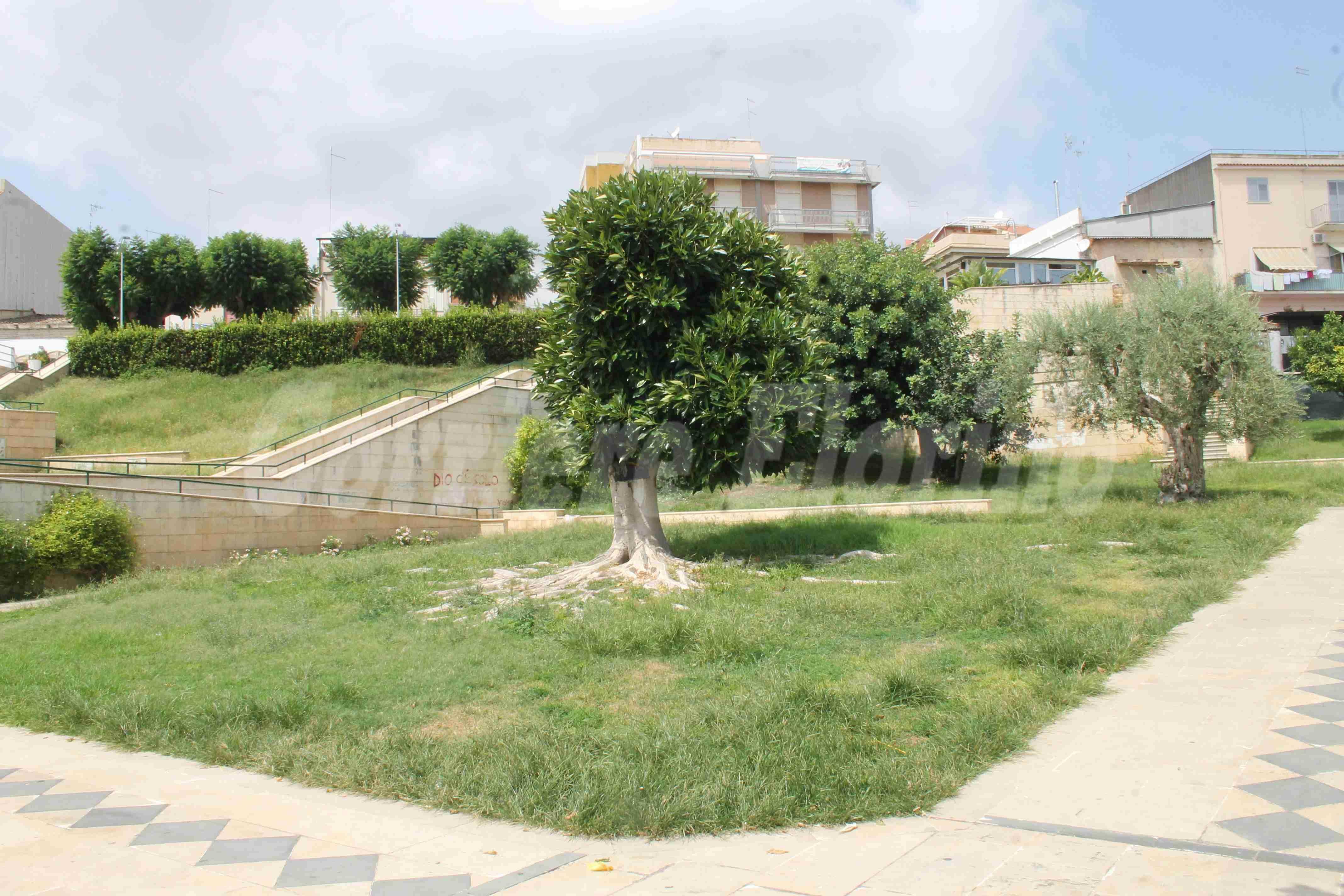 Il verde del Parco Giovanni Paolo II abbandonato a se stesso