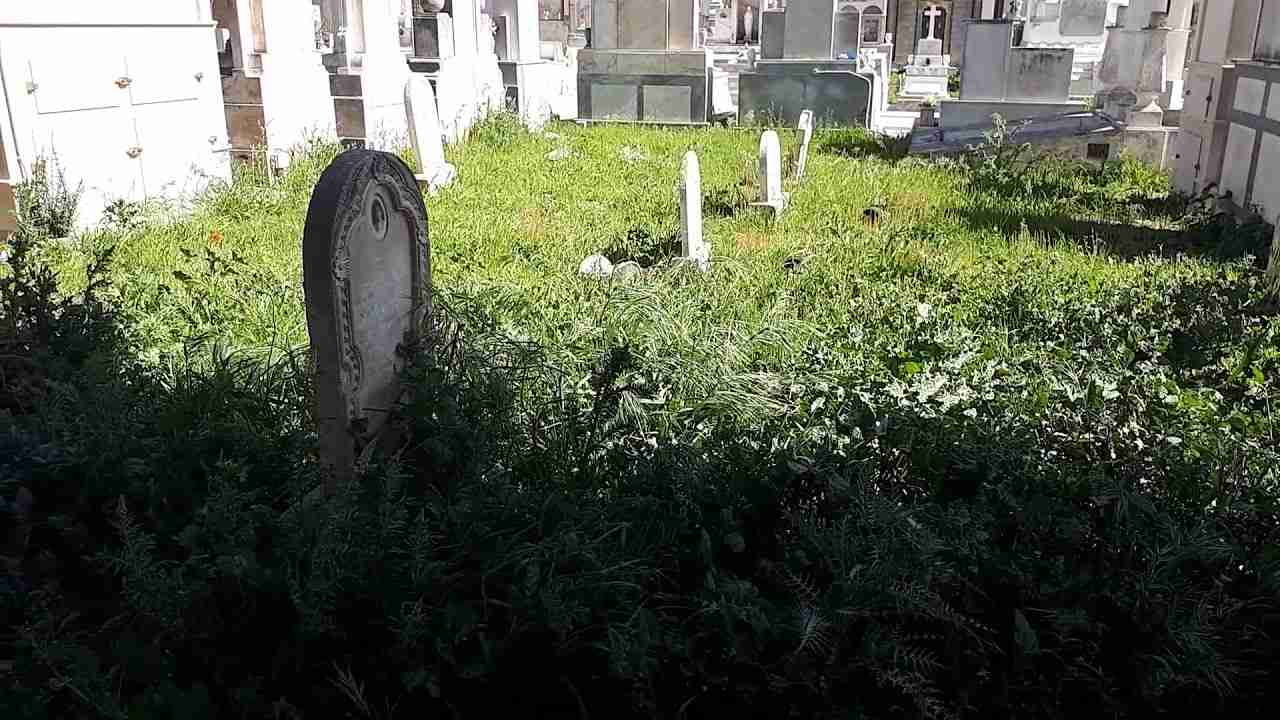 Sepolte dall'erba: nel cimitero di Rosolini poco decoro per le tombe