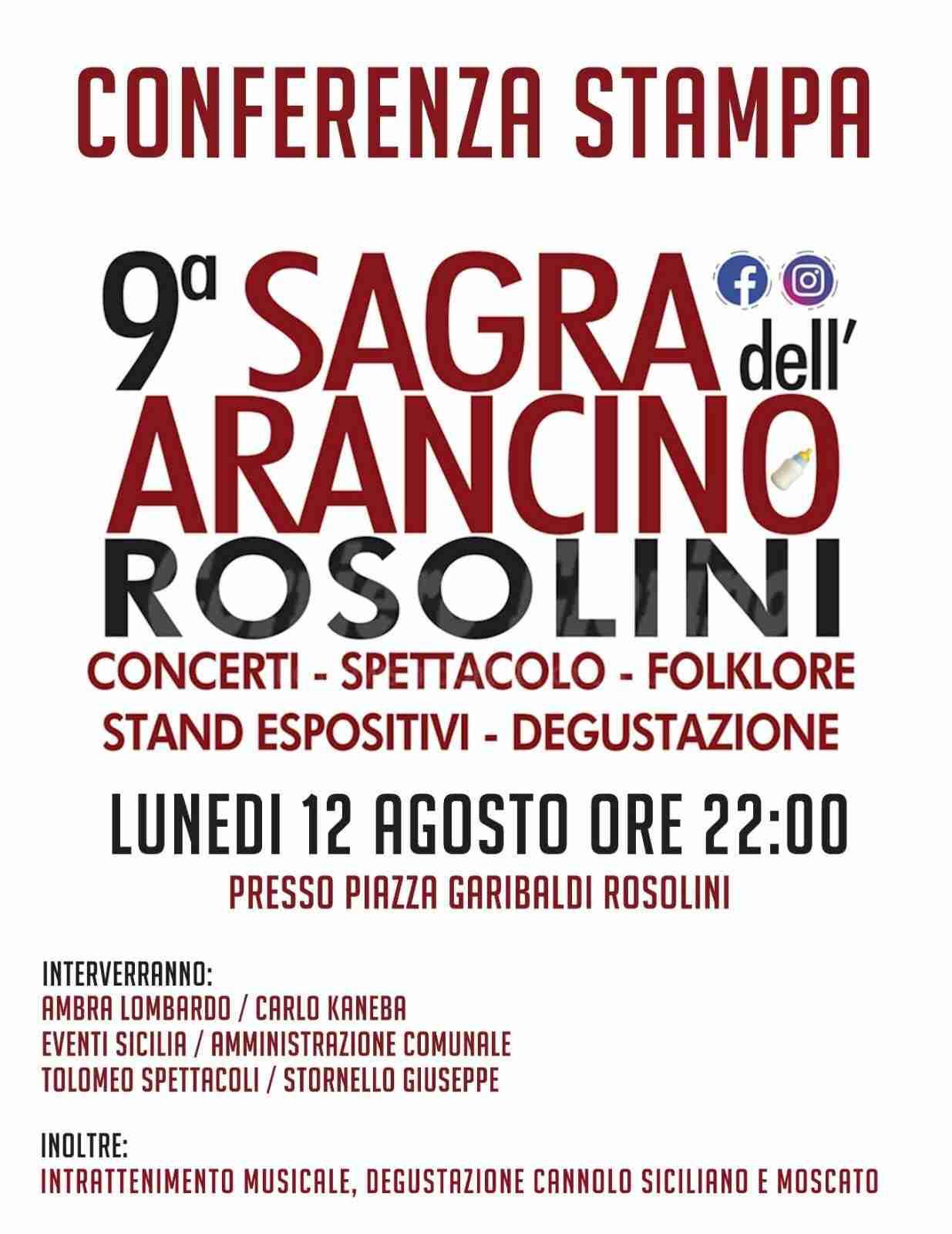 """""""IX Sagra dell'Arancino"""": lunedì 12 agosto maxi conferenza stampa"""