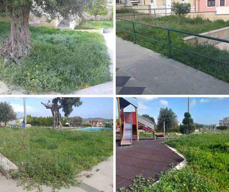 """Città Verde: """"Verde pubblico in abbandono"""". L'Assessore: """"presto gli interventi"""""""