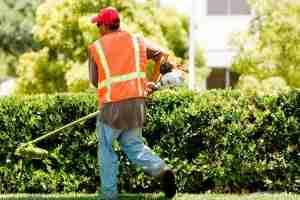 Servizi di pubblica utilità, al via le istanze per i disoccupati